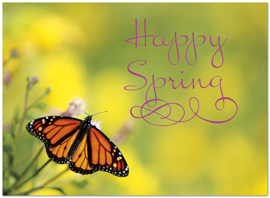 Spring butterfly card happy spring cards posty cards inc zoom m4hsunfo