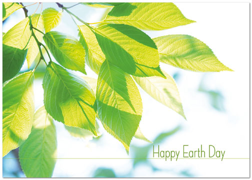Earth Day Leaves Card A3043KW-X