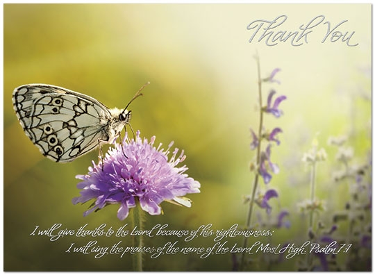 Butterfly Thank You Card Religious Thank You Cards Posty Cards