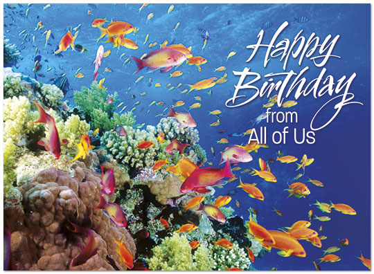 School of Fish Birthday Card From All of Us – Fish Birthday Cards