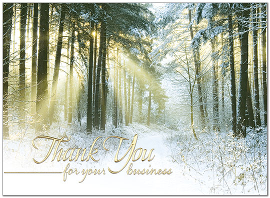 Sunlit Thank You Holiday Card H7141G-AAA