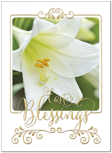 easter lily card bulk religious easter cards posty cards
