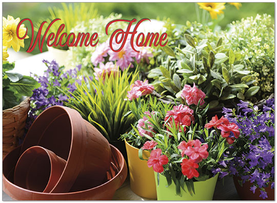Welcome Floral Congrats Card D9051U-Y