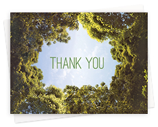 Green Recycled All Occasion Greeting Cards