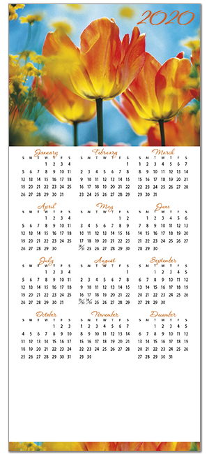 Tulips Magnetic Mini Calendar D9124Q-4B