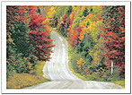 Open Road Note Card 551D-Y