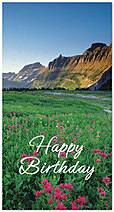 Floral Field Birthday Card 935T-Z