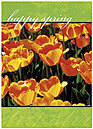 Happy Spring Greeting Card 964D-Y