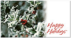 Holly Berries Holiday Card X585T-B