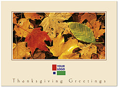 Fall Colors Logo Card DX40U-4B