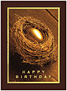 Nest Egg Birthday Card 129U-X