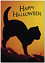Black Cat Halloween Card 171D-Y