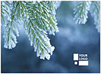 Frosted Branch Logo Card D1346U-4B