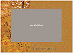 Golden Oak Photo Card D1259U-4B