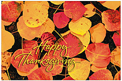 Fallen Leaves Thanksgiving Postcard H1235P-B