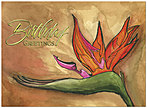 Bird of Paradise Birthday Card A2006G-W