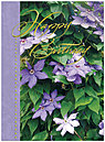 Clematis Blossoms Birthday Card A2019U-X