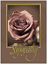 Sentimental Sympathy Card A2066U-X