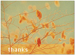 Warm Thanks Thanksgiving Card D2118U-A