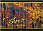 Colorful Timbers Business Thanks Card H2105G-AAA
