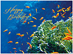 Reef Birthday Card A3022U-X