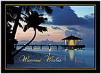 Tropical Wishes Holiday Card H3170U-AA