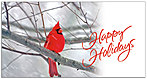 Holiday Cardinal Card H3188T-B