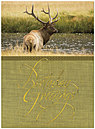 Elk River Birthday Card A4034U-X