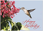 Hummingbird Birthday Card A4045U-Y