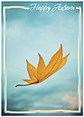 Floating Leaf Autumn Card D4080D-Y