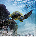 Sea Turtle Wall Calendar D4158U-AA