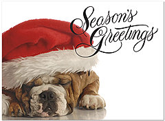 Bulldog Greetings Holiday Card D4253U-A