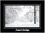 Peaceful Path Holiday Card H4232U-A
