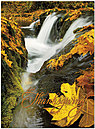 Silver Falls Thanksgiving Card H4132U-AA