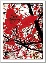 Graphic Leaves Thanksgiving Card H4137U-A