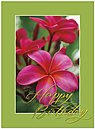 Plumeria Birthday Card A5019U-X