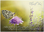 Butterfly Thank You Card A5068U-X