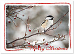 Winter Chickadee Christmas Card H5203U-A