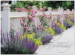 Floral Fence Birthday Card A6006S-W
