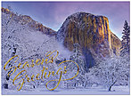 Majestic Winter Holiday Card H6125G-AAA