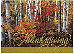 Vibrant Birch Thanksgiving Card H6062G-AAA
