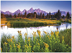Mountain Notecard D7056U-Y