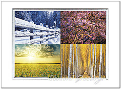 Seasons Holiday Card H7142S-AAA