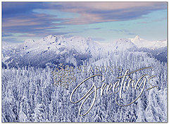 Snowfall Greetings Holiday Card H8184S-AAA