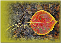 Simple Leaf Thanksgiving Card H8102KW-AA