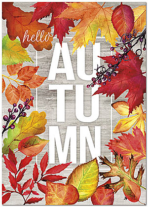 Hello Autumn Thanksgiving Card H8104KW-AA