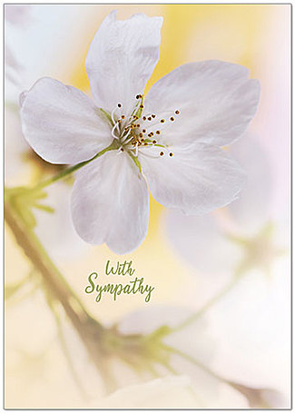 Sympathy Flower Greeting Card A9025KW-X