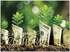 Cash Garden Birthday Card A9029U-X