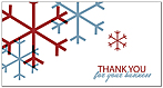 Simple Thank You Holiday Card D9167T-B