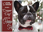 Dapper Dog Holiday Card D9193U-A